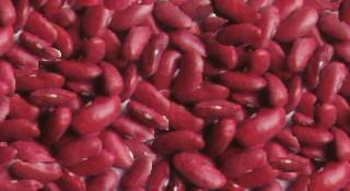 Crveni pasulj